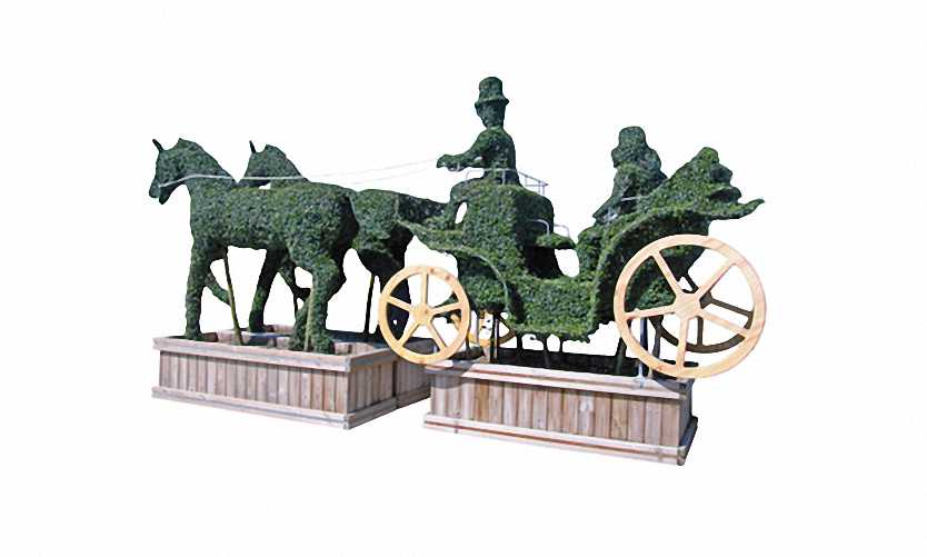 Topiary Ponies With Carriage (Ligustrum Jonandrum)