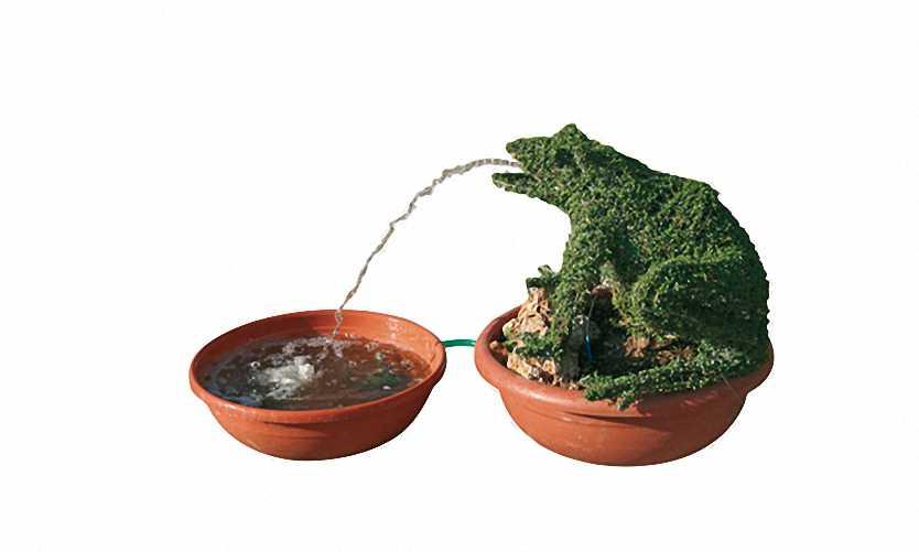 Topiary Frog Water Feature Complete (Ligustrum Jonandrum)