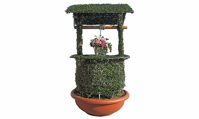 Topiary Well With Dome (Ligustrum Jonandrum)
