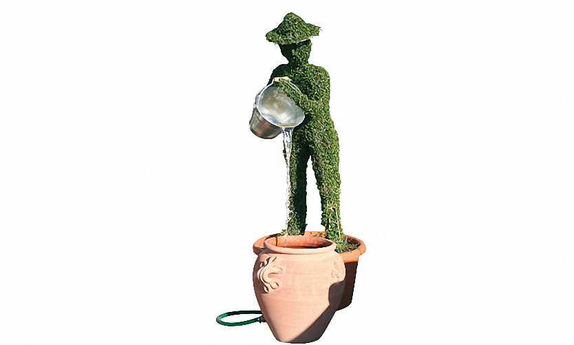 Man With Bucket And Water (Ligustrum Jonandrum)