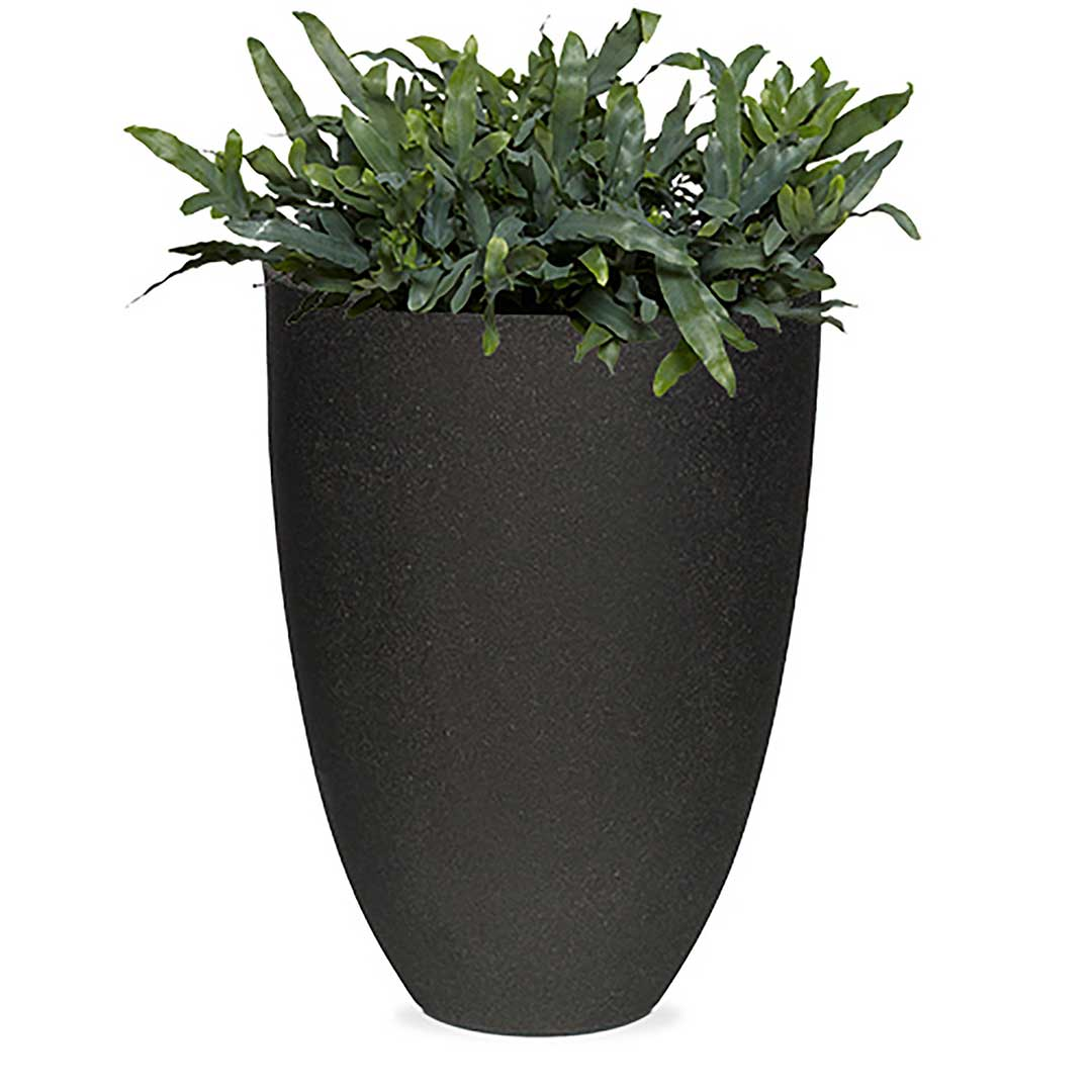 Vase Elegant Low Smooth NL
