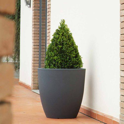 'Orione' Tall Planter