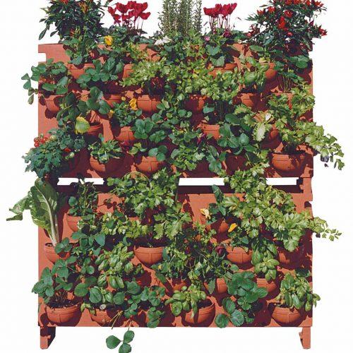 'Garden of Giulio' Planter