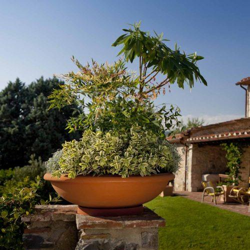 Large Planting Bowl